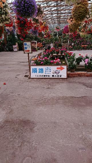 moblog_ea43aabb.jpg