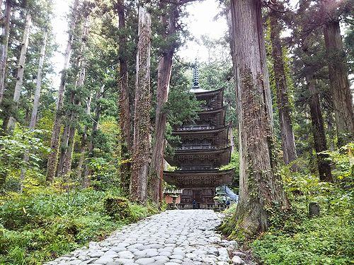 20181023山形県鶴岡市、出羽三山神社・五重塔 (8)