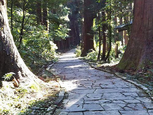20181023山形県鶴岡市、出羽三山神社・五重塔 (18)
