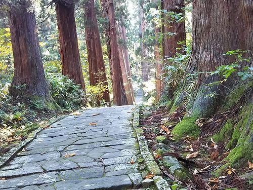 20181023山形県鶴岡市、出羽三山神社・五重塔 (19)