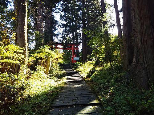 20181023山形県鶴岡市、出羽三山神社・五重塔 (22)