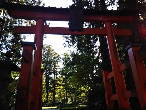 20181023山形県鶴岡市、出羽三山神社・五重塔 (24)
