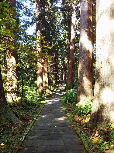 20181023山形県鶴岡市、出羽三山神社・五重塔 (36)