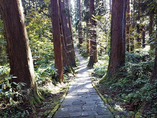 20181023山形県鶴岡市、出羽三山神社・五重塔 (37)