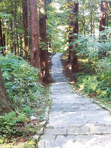 20181023山形県鶴岡市、出羽三山神社・五重塔 (38)