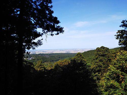 20181023山形県鶴岡市、出羽三山神社・五重塔 (39)