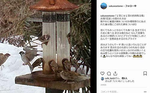 20190222草津温泉カフェ花栞(はなしおり)お客様のインスタグラムへの投稿