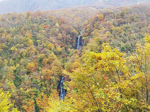 20181024宮城県蔵王町、滝見台の紅葉1