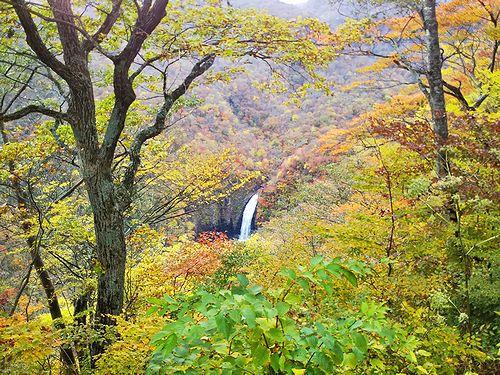 20181024宮城県蔵王町、不動滝展望台の紅葉3