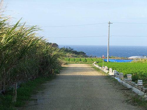 20190219沖縄県糸満市の風景 (3)