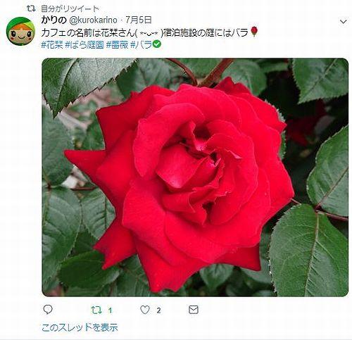 20190705草津温泉民泊花栞(はなしおり)お客様のツイッターへの投稿
