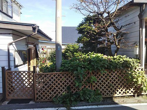 20190927草津温泉民泊花栞(はなしおり)部屋増室計画 (2)