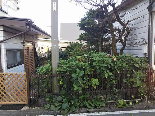 20190927草津温泉民泊花栞(はなしおり)部屋増室計画 (3)