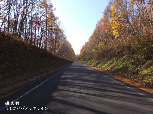 20191113群馬県嬬恋村、つまごいパノラマライン (2)