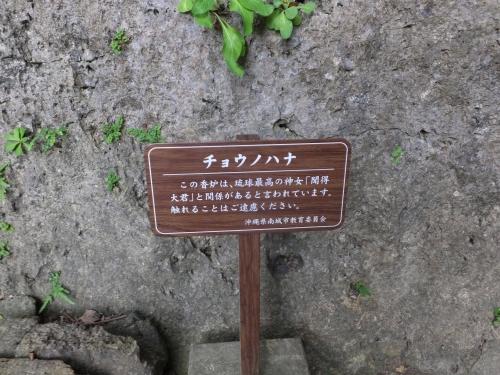20190219沖縄県南城市、斎場御嶽 (8)