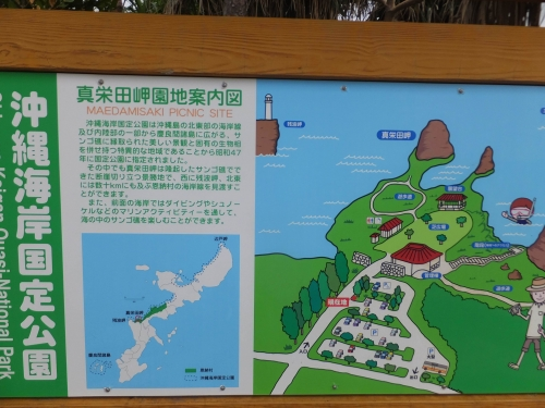 20190220沖縄県恩納村、真栄田岬 (1)