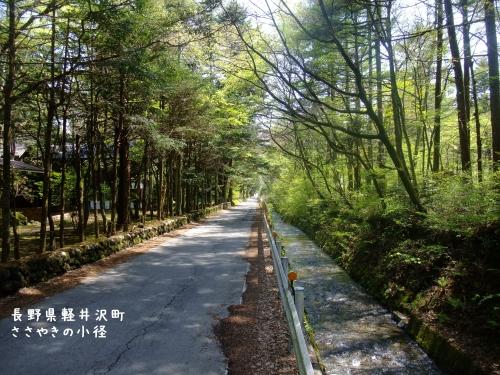 20120516長野県軽井沢町、ささやきの小径 (1)