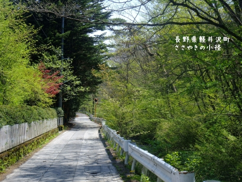20120516長野県軽井沢町、ささやきの小径 (2)