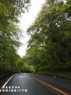 20200520群馬県草津町、新緑の国道292号線 (2)