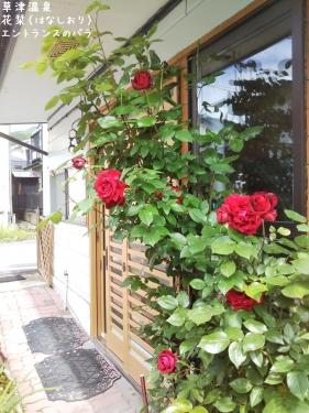 20200623草津温泉民泊花栞(はなしおり)エントランスのバラ