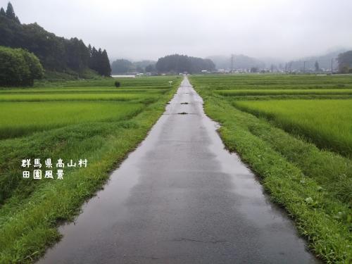 20200729群馬県高山村、田園