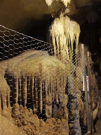 龍河洞のクラゲ石
