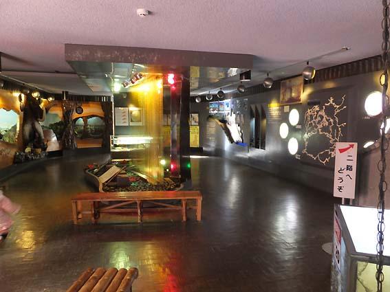 龍河洞博物館一階
