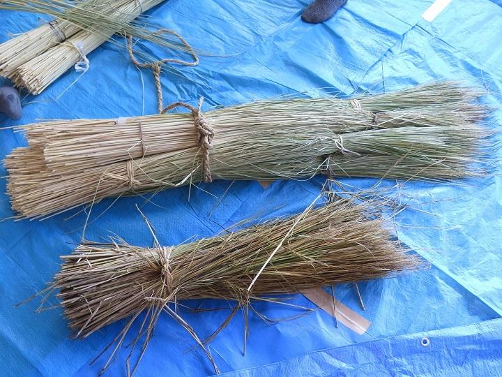 長い藁と短い藁