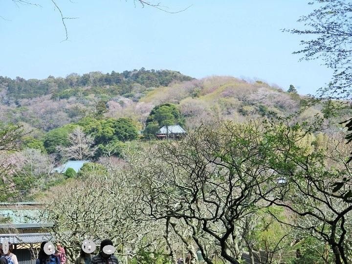円覚寺方面