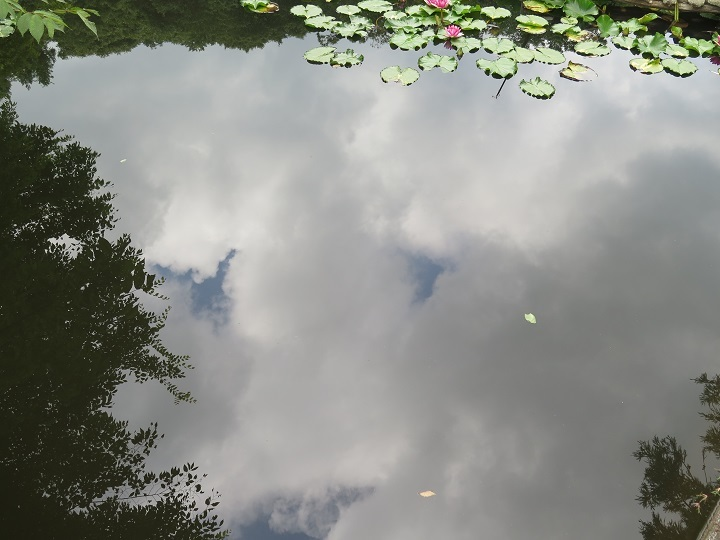 池に写る空