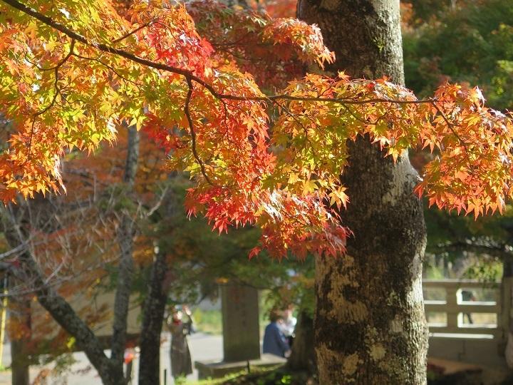 土津神社3