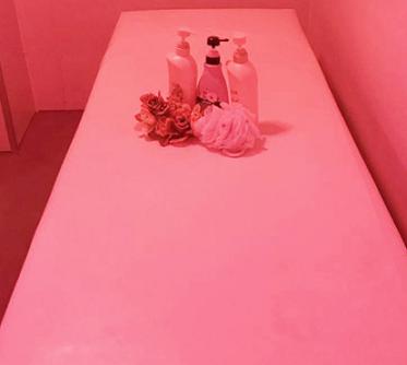 ピンクベッド