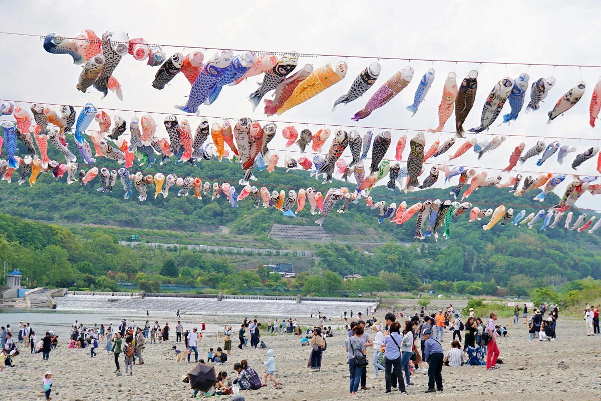 相模川鯉のぼり2019050507
