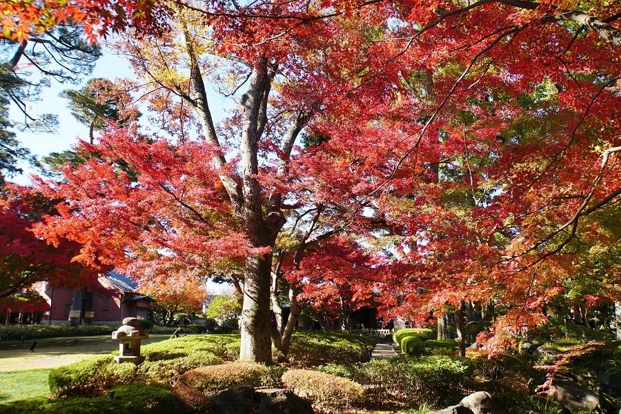 大田黒公園2018121403