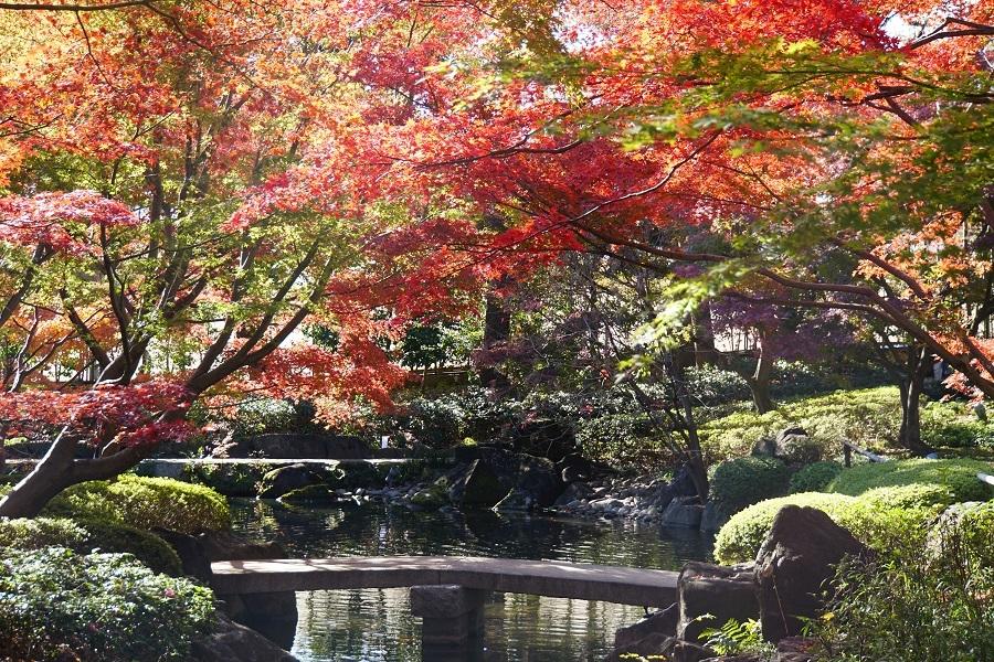 大田黒公園2018121404