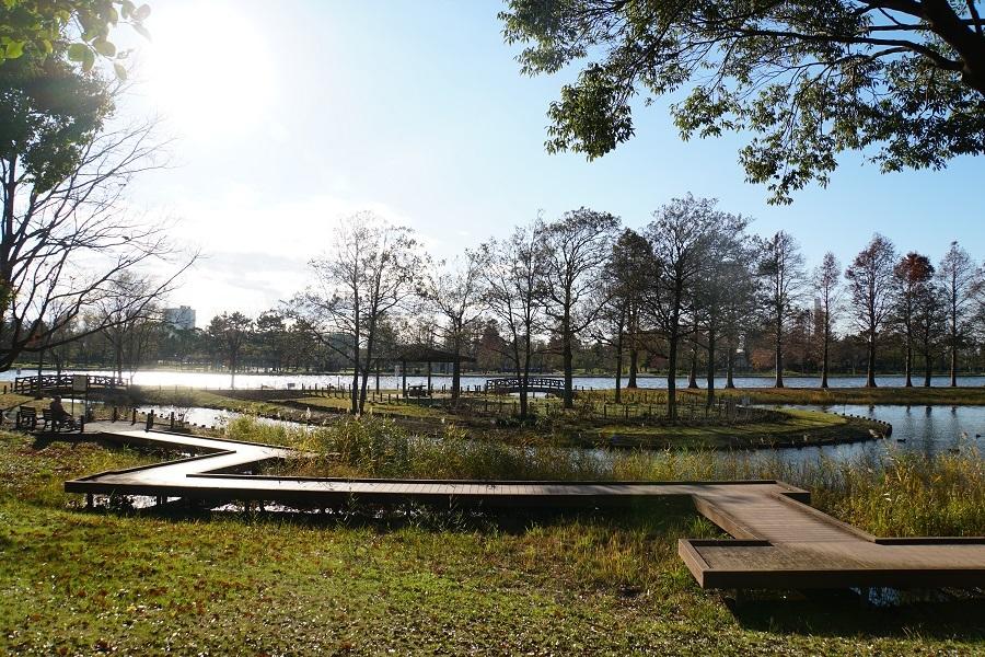 みさと公園2018122108