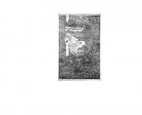 20200628-18.jpg