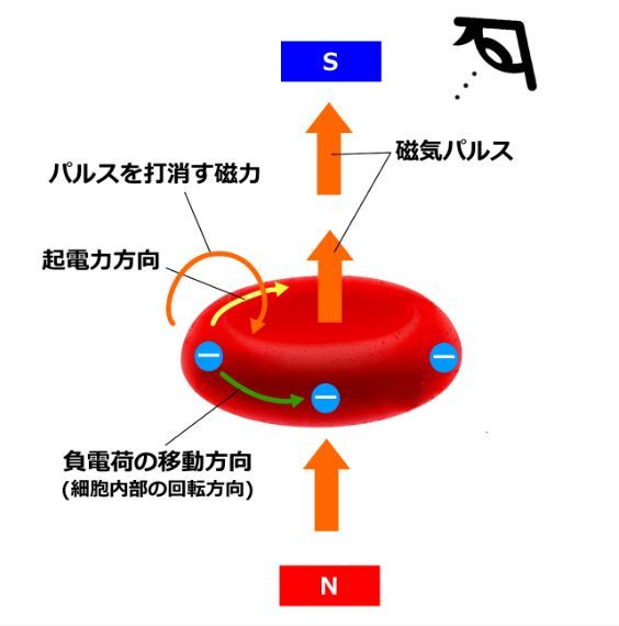 fuku1-5.jpg