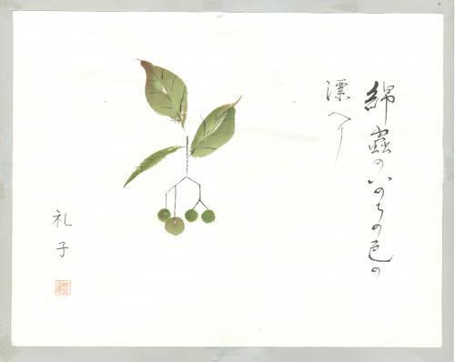 菩提樹の実2(合成Arc修正)_convert_20181117221001