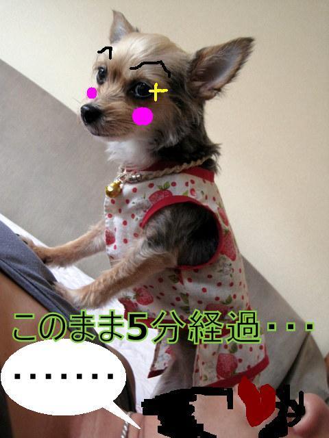 IMG_3737.JPG