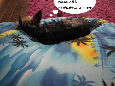 IMG_1605-1.JPG