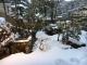 雪の湯涌温泉