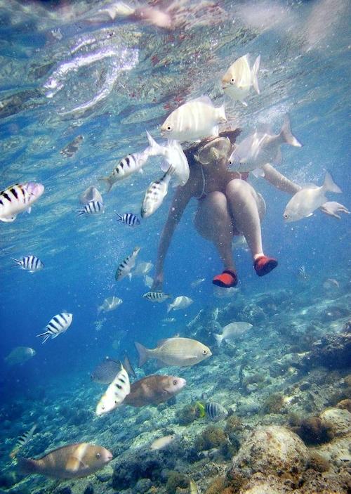 海の中でビキニを取って全裸で泳ぐ美女のヌード画像 1