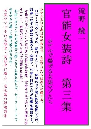 表紙:官能女装詩第三集:ブログ記事用30