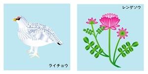 岐阜県の鳥と花