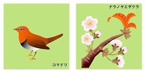 奈良県の鳥と花
