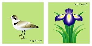 三重県の鳥と花
