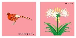 宮崎県の鳥と花