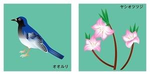 栃木県の鳥と花