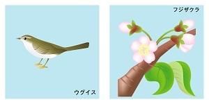 山梨県の鳥と花